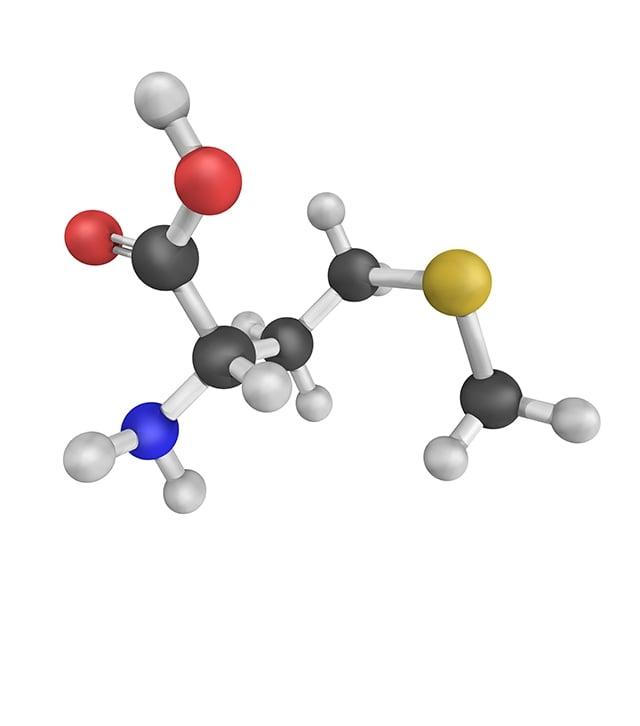 含有維他命原B5 (泛醇)